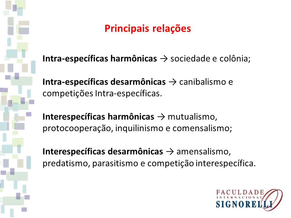 Principais relações Intra-específicas harmônicas sociedade e colônia; Intra-específicas desarmônicas canibalismo e competições Intra-específicas.