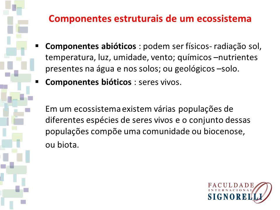 Componentes estruturais de um ecossistema Componentes abióticos : podem ser físicos- radiação sol, temperatura, luz, umidade, vento; químicos –nutrientes presentes na água e nos solos; ou geológicos –solo.