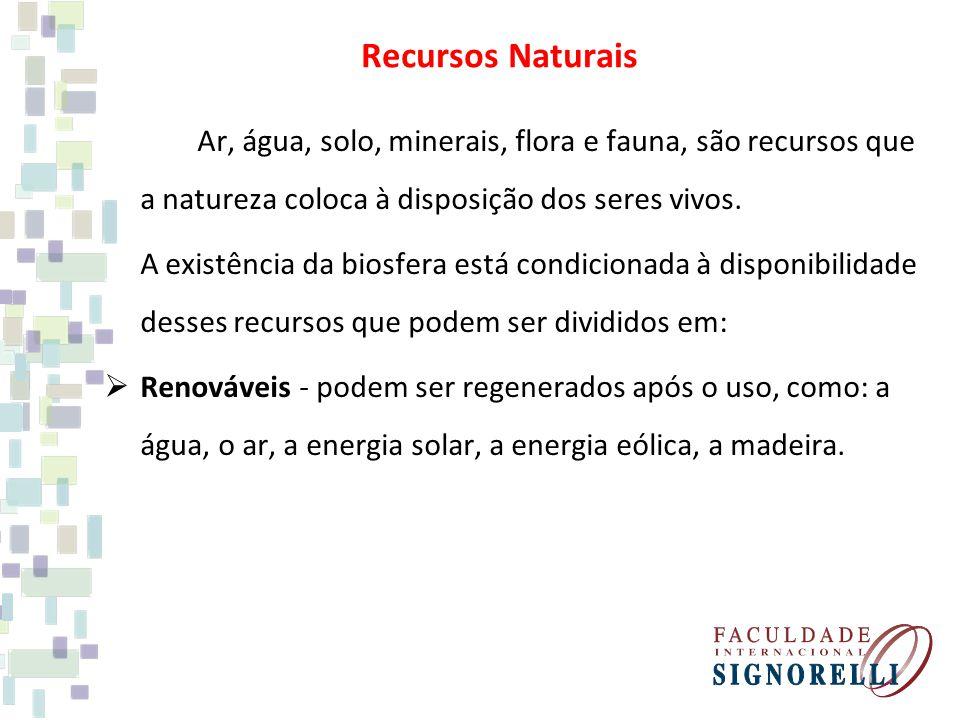 Recursos Naturais Ar, água, solo, minerais, flora e fauna, são recursos que a natureza coloca à disposição dos seres vivos. A existência da biosfera e