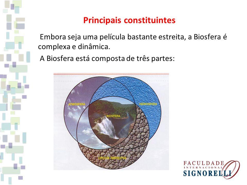 Principais constituintes Embora seja uma película bastante estreita, a Biosfera é complexa e dinâmica. A Biosfera está composta de três partes: