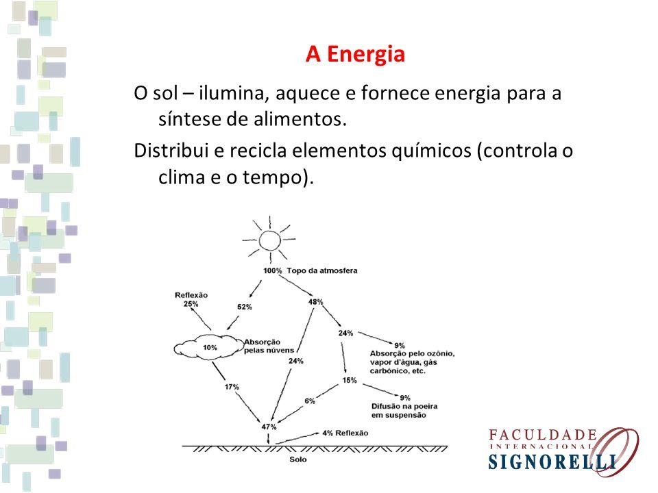 A Energia O sol – ilumina, aquece e fornece energia para a síntese de alimentos. Distribui e recicla elementos químicos (controla o clima e o tempo).