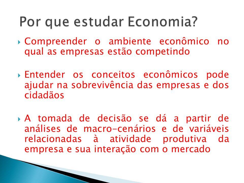 Compreender o ambiente econômico no qual as empresas estão competindo Entender os conceitos econômicos pode ajudar na sobrevivência das empresas e dos