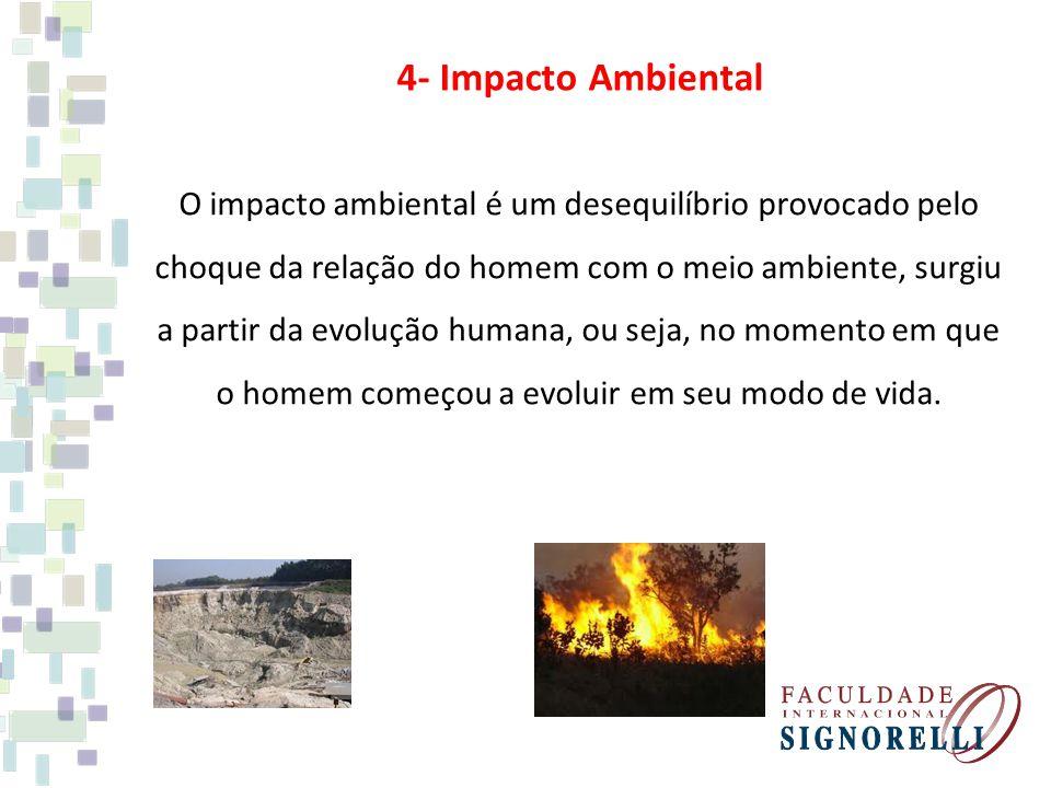 4- Impacto Ambiental O impacto ambiental é um desequilíbrio provocado pelo choque da relação do homem com o meio ambiente, surgiu a partir da evolução humana, ou seja, no momento em que o homem começou a evoluir em seu modo de vida.