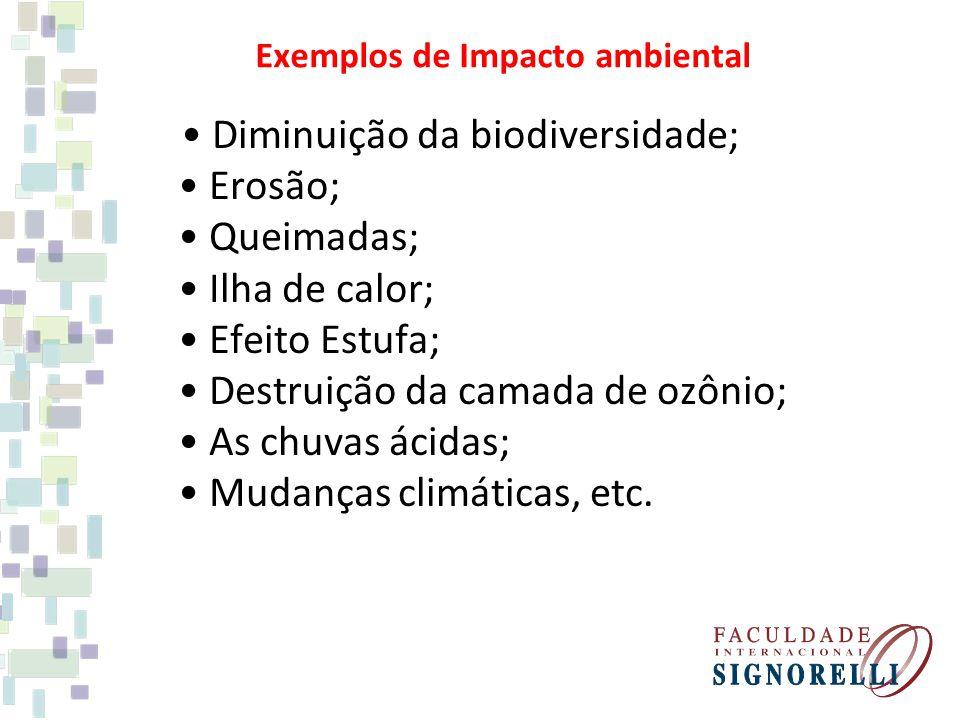 Exemplos de Impacto ambiental Diminuição da biodiversidade; Erosão; Queimadas; Ilha de calor; Efeito Estufa; Destruição da camada de ozônio; As chuvas ácidas; Mudanças climáticas, etc.