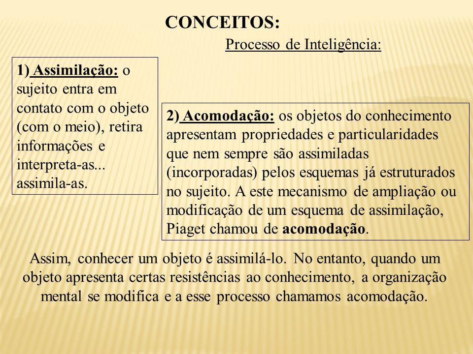 CONCEITOS: Processo de Inteligência: 1) Assimilação: o sujeito entra em contato com o objeto (com o meio), retira informações e interpreta-as...