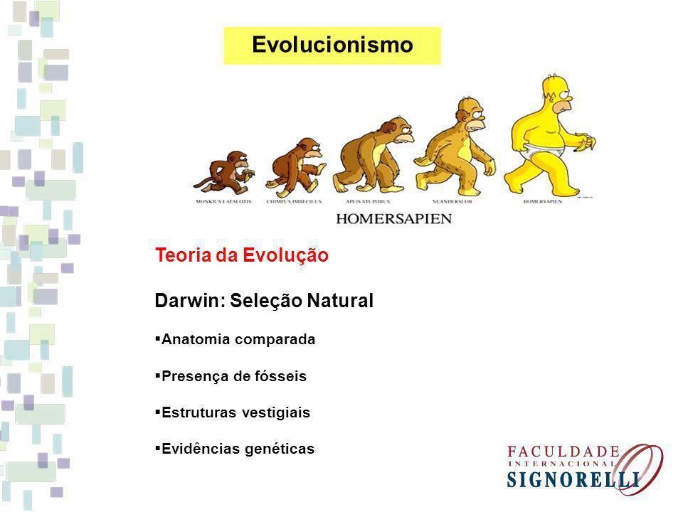 Evolucionismo Teoria da Evolução Darwin: Seleção Natural Anatomia comparada Presença de fósseis Estruturas vestigiais Evidências genéticas