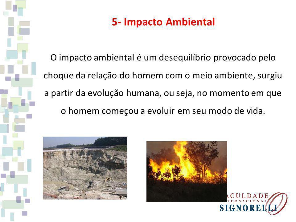 5- Impacto Ambiental O impacto ambiental é um desequilíbrio provocado pelo choque da relação do homem com o meio ambiente, surgiu a partir da evolução