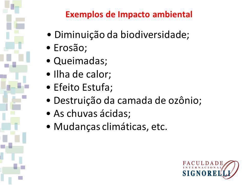 Exemplos de Impacto ambiental Diminuição da biodiversidade; Erosão; Queimadas; Ilha de calor; Efeito Estufa; Destruição da camada de ozônio; As chuvas