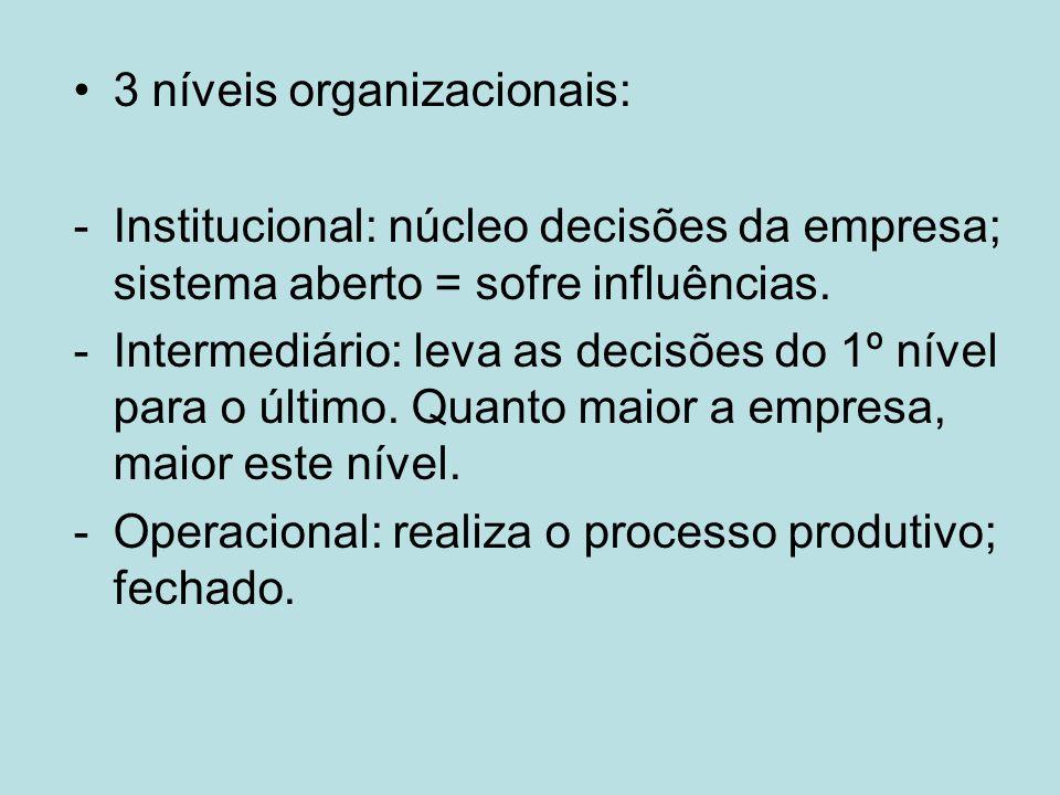 3 níveis organizacionais: -Institucional: núcleo decisões da empresa; sistema aberto = sofre influências. -Intermediário: leva as decisões do 1º nível