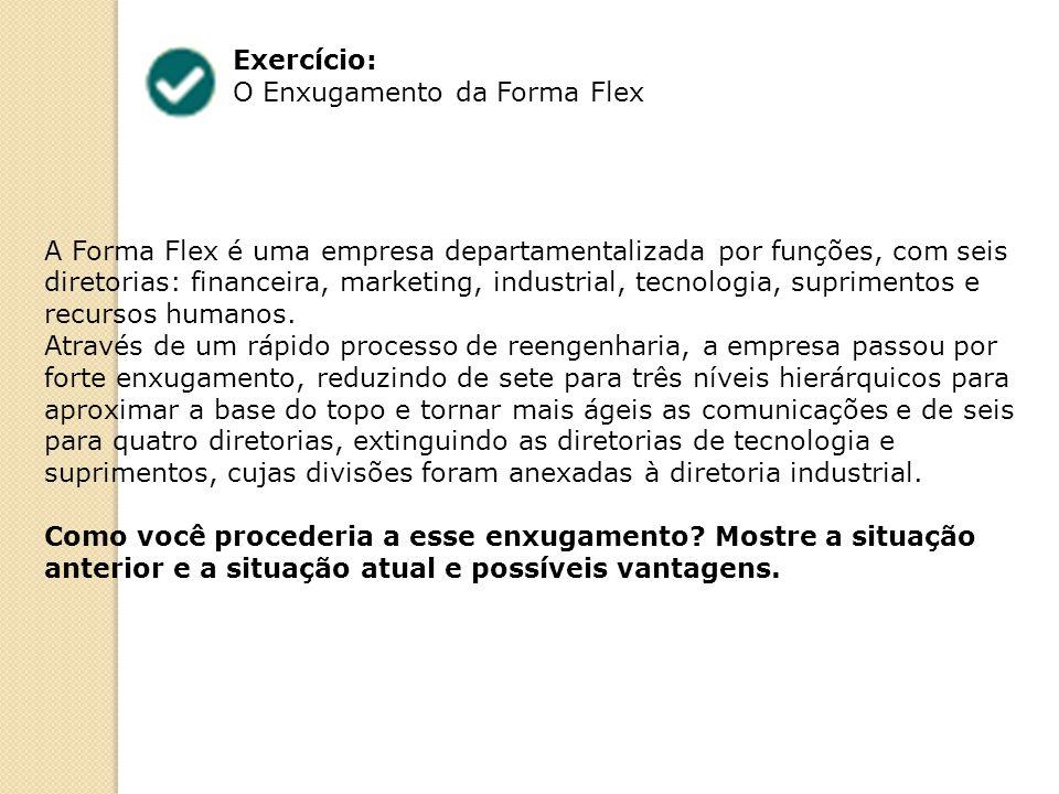 Exercício: O Enxugamento da Forma Flex A Forma Flex é uma empresa departamentalizada por funções, com seis diretorias: financeira, marketing, industrial, tecnologia, suprimentos e recursos humanos.