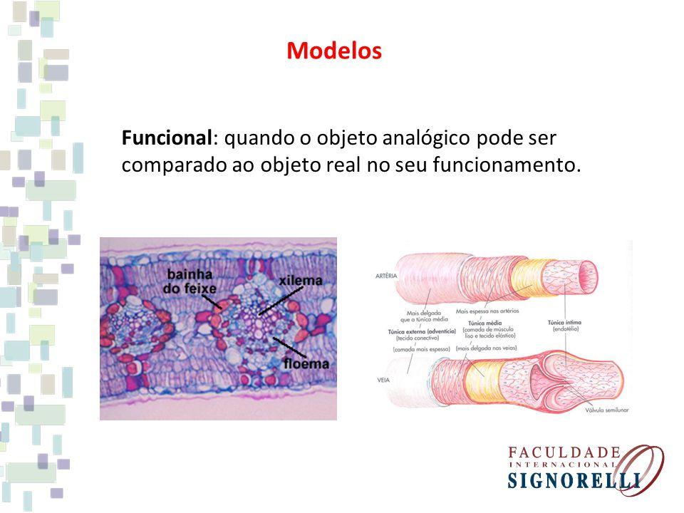 Funcional: quando o objeto analógico pode ser comparado ao objeto real no seu funcionamento. Modelos