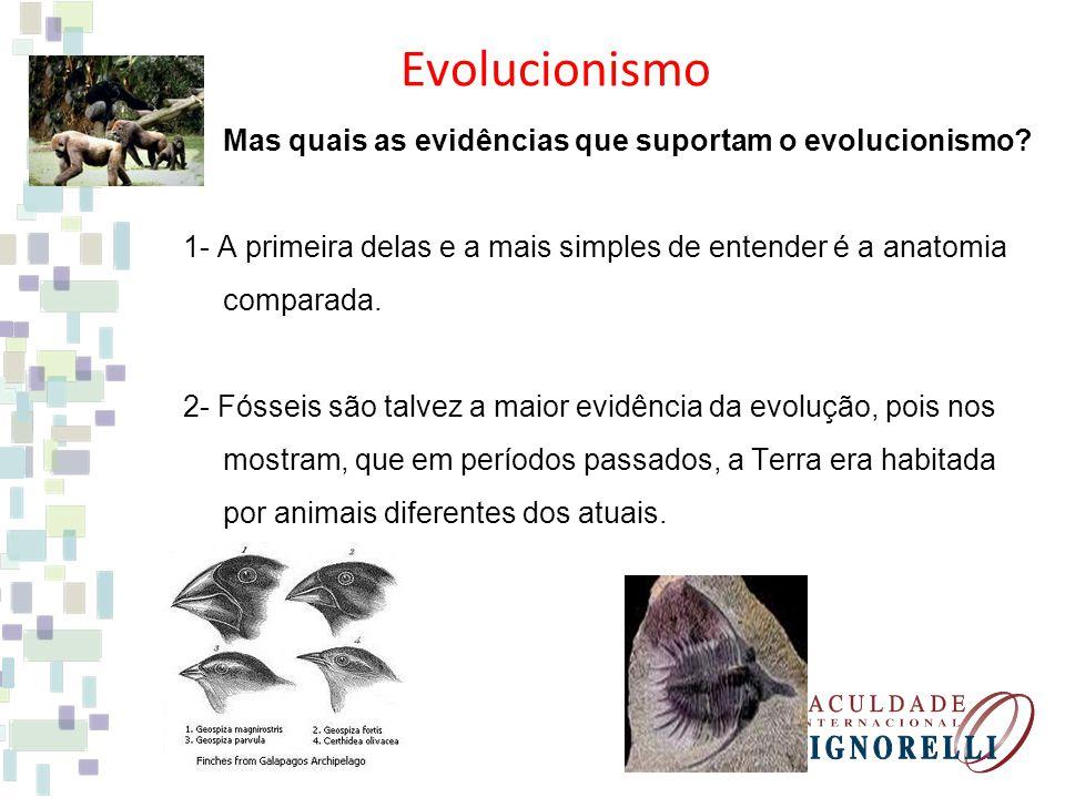 Evolucionismo Mas quais as evidências que suportam o evolucionismo? 1- A primeira delas e a mais simples de entender é a anatomia comparada. 2- Fóssei