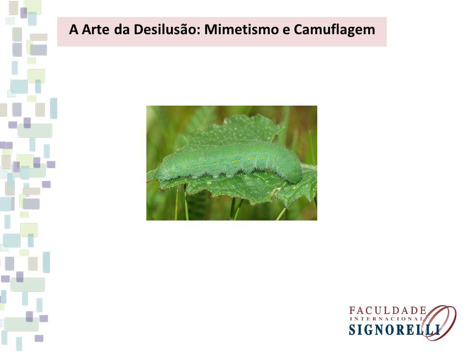 A Arte da Desilusão: Mimetismo e Camuflagem