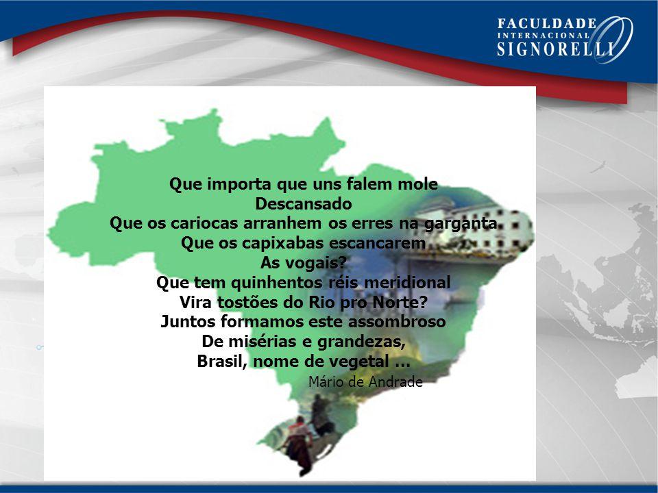 Falar bem é falar ADEQUADAMENTE O gramático Evanildo Bechara ensina que é preciso ser poliglota de nossa própria língua. Poliglota é a pessoa que fala