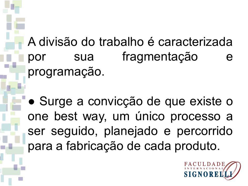 A divisão do trabalho é caracterizada por sua fragmentação e programação.