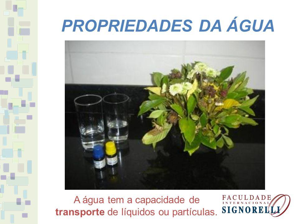 PROPRIEDADES DA ÁGUA Devido às características físicas e químicas da água forma-se uma tensão superficial.