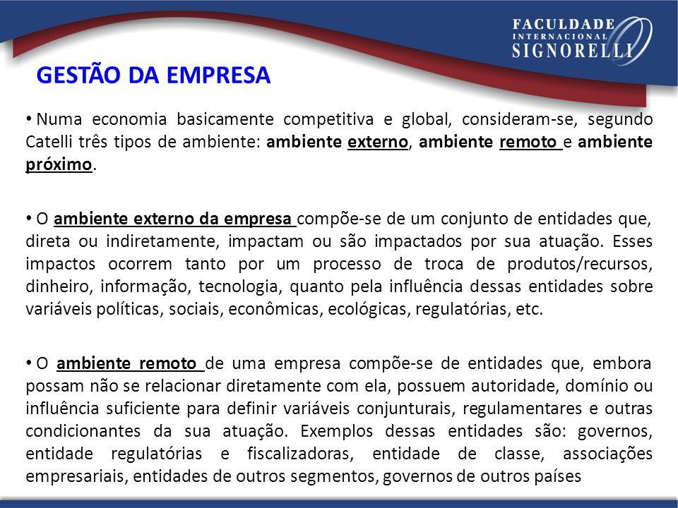 Numa economia basicamente competitiva e global, consideram-se, segundo Catelli três tipos de ambiente: ambiente externo, ambiente remoto e ambiente pr