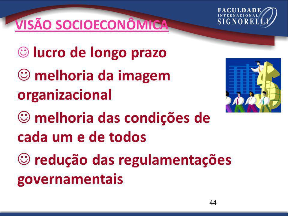44 VISÃO SOCIOECONÔMICA lucro de longo prazo melhoria da imagem organizacional melhoria das condições de cada um e de todos redução das regulamentaçõe