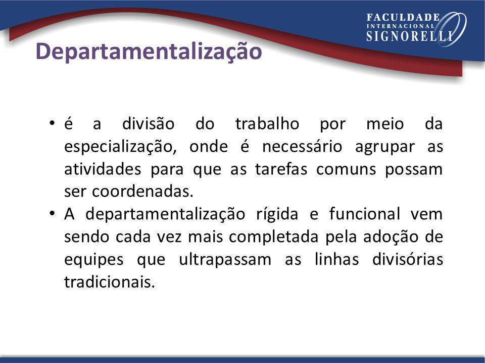Departamentalização é a divisão do trabalho por meio da especialização, onde é necessário agrupar as atividades para que as tarefas comuns possam ser coordenadas.