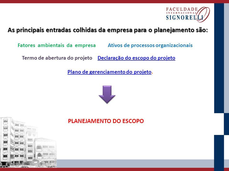 As principais entradas colhidas da empresa para o planejamento são: Fatores ambientais da empresaAtivos de processos organizacionais Termo de abertura