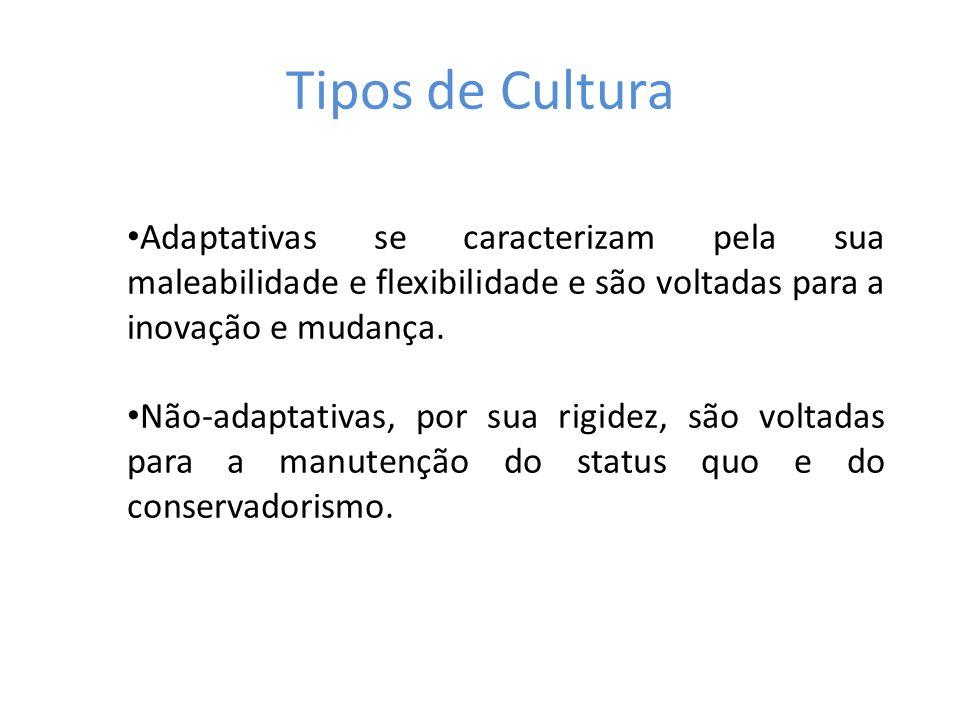 Tipos de Cultura Adaptativas se caracterizam pela sua maleabilidade e flexibilidade e são voltadas para a inovação e mudança. Não-adaptativas, por sua