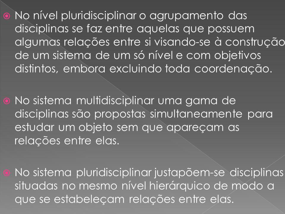 No nível pluridisciplinar o agrupamento das disciplinas se faz entre aquelas que possuem algumas relações entre si visando-se à construção de um siste