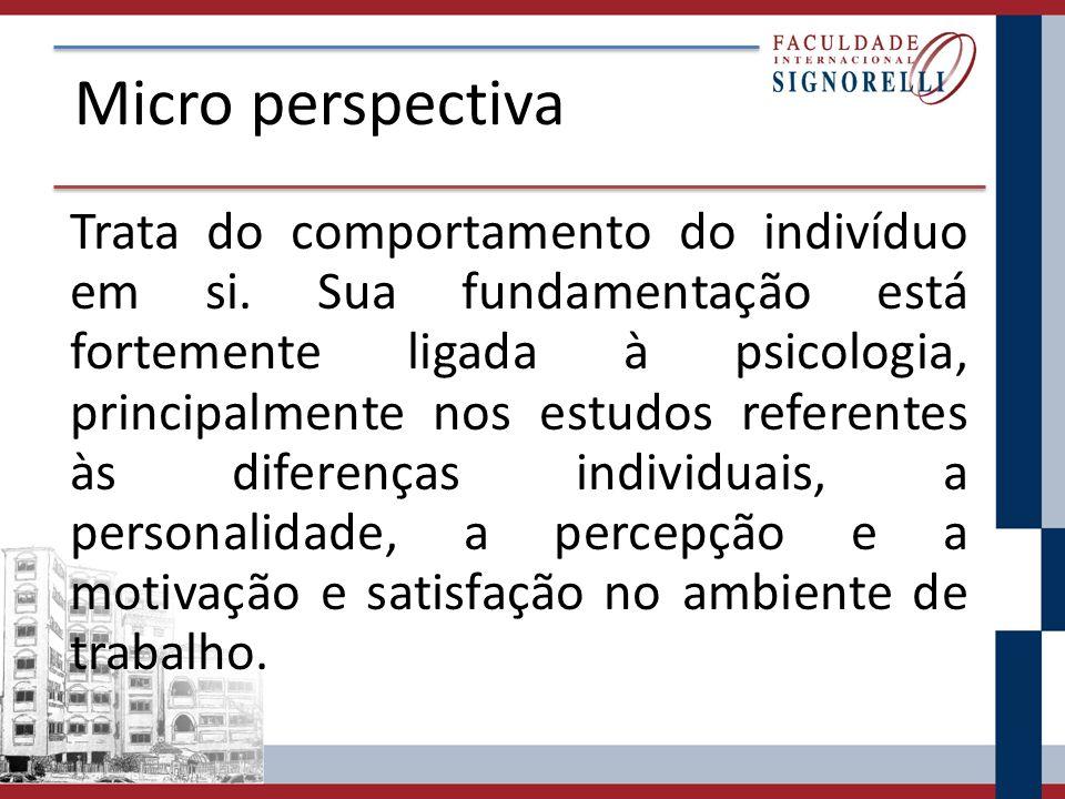 Micro perspectiva Trata do comportamento do indivíduo em si.