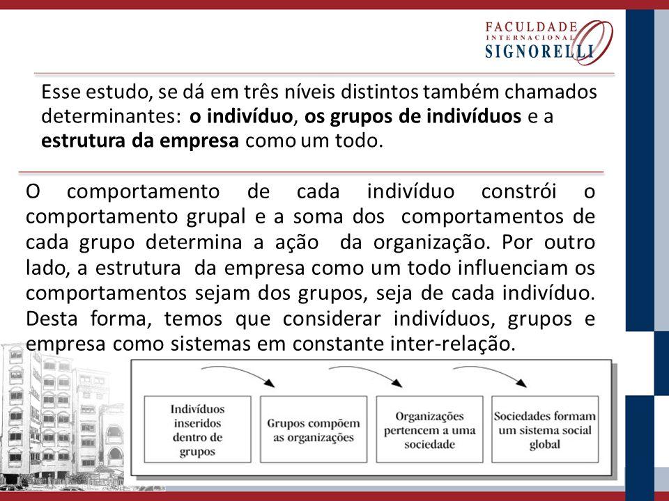 Esse estudo, se dá em três níveis distintos também chamados determinantes: o indivíduo, os grupos de indivíduos e a estrutura da empresa como um todo.