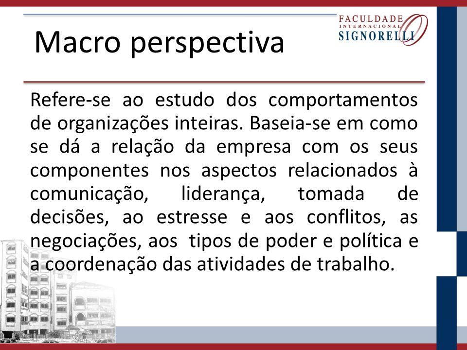 Macro perspectiva Refere-se ao estudo dos comportamentos de organizações inteiras.