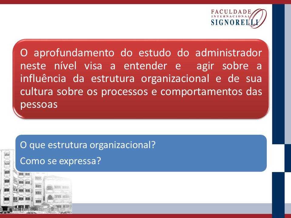 O aprofundamento do estudo do administrador neste nível visa a entender e agir sobre a influência da estrutura organizacional e de sua cultura sobre os processos e comportamentos das pessoas O que estrutura organizacional.
