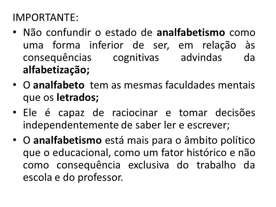 O ANALFABETISMO FUNCIONAL COMENTÁRIOS DO GRUPO: SISTEMATIZAÇÃO.