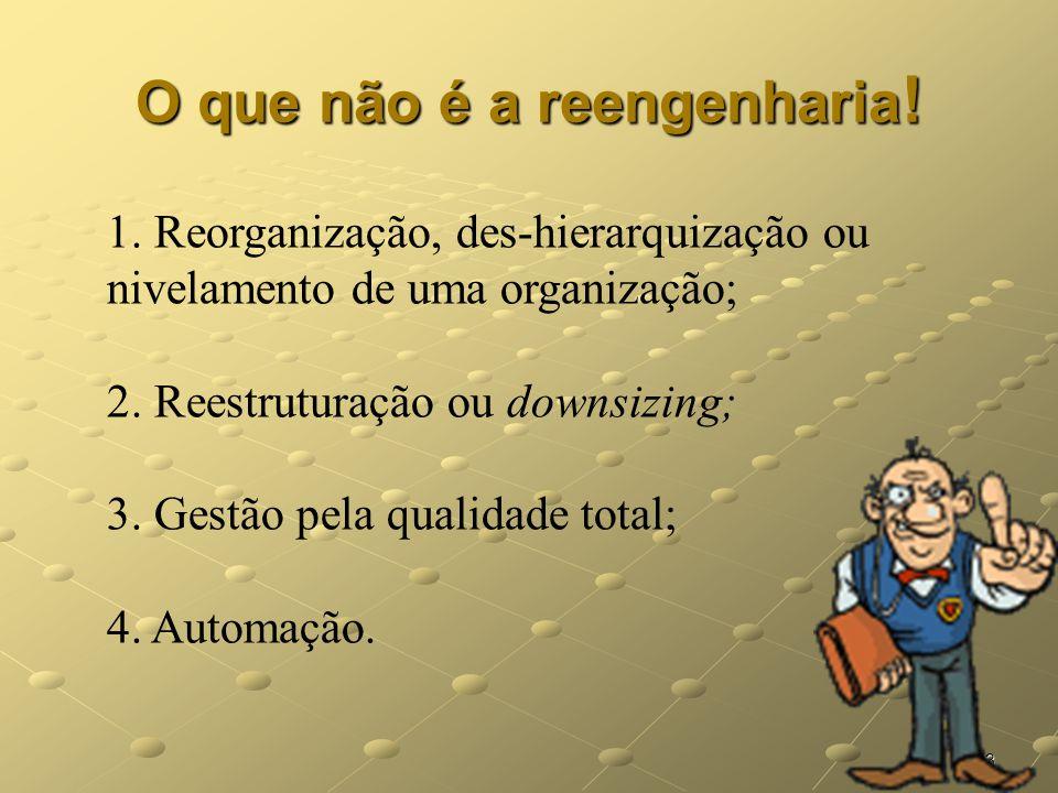 13 O que não é a reengenharia ! 1. Reorganização, des-hierarquização ou nivelamento de uma organização; 2. Reestruturação ou downsizing; 3. Gestão pel