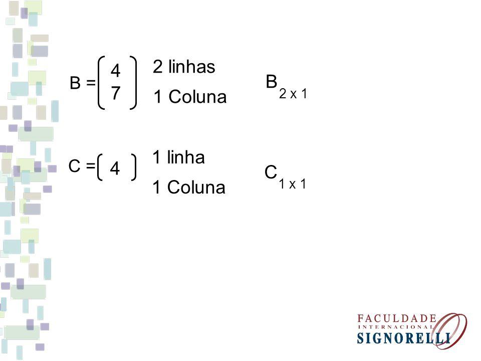 4 74 7 B = 2 linhas 1 Coluna B 2 x 1 4 C = 1 linha 1 Coluna C 1 x 1