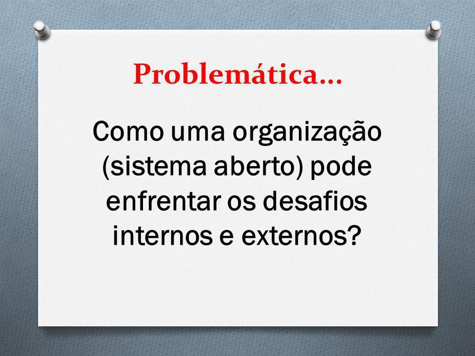 Problemática... Como uma organização (sistema aberto) pode enfrentar os desafios internos e externos?