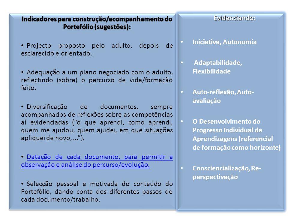 Indicadores para construção/acompanhamento do Portefólio (sugestões): Projecto proposto pelo adulto, depois de esclarecido e orientado.