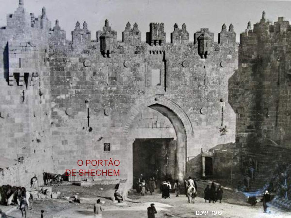 H613 DAS FOTOGRAFIAS DA TERRA DE ISRAEL FIM DAVID PARKS - JERUSALÉM