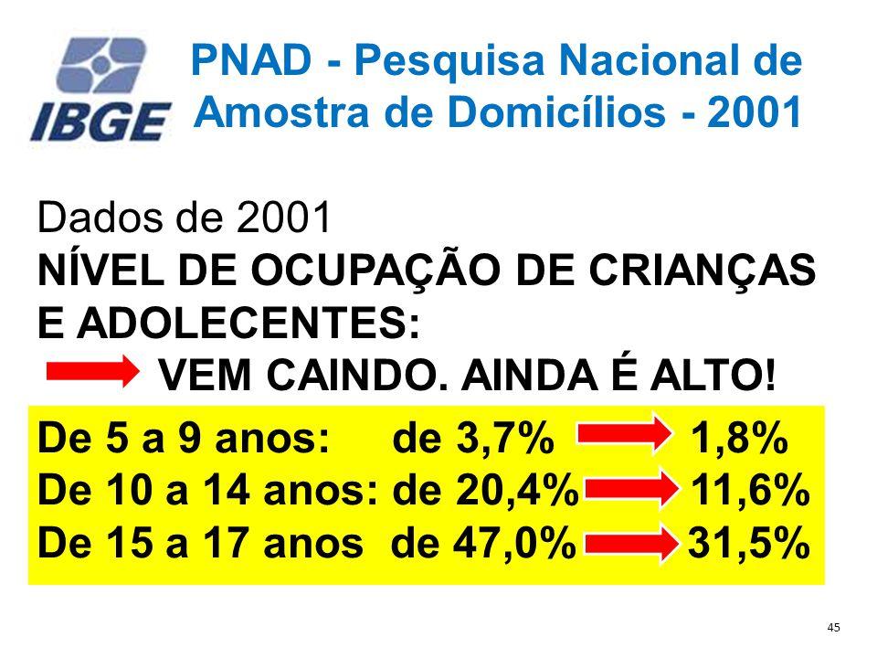 PNAD - Pesquisa Nacional de Amostra de Domicílios - 2001 Dados de 2001 NÍVEL DE OCUPAÇÃO DE CRIANÇAS E ADOLECENTES: VEM CAINDO.