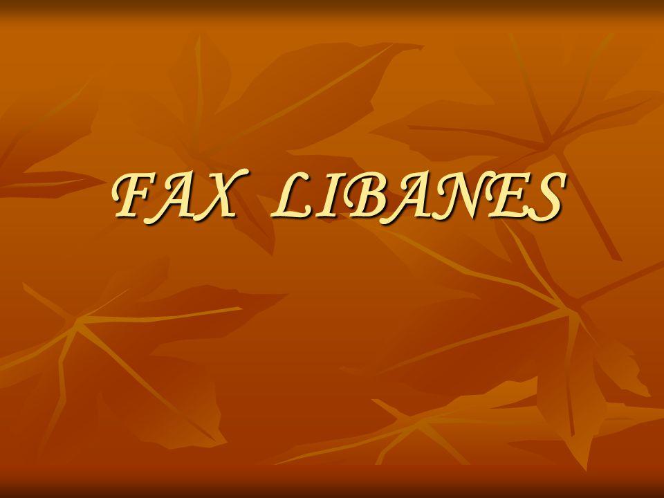 FAX LIBANES