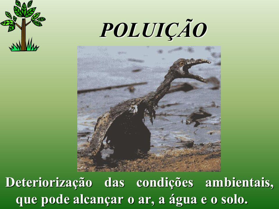 POLUIÇÃO Deteriorização das condições ambientais, que pode alcançar o ar, a água e o solo.
