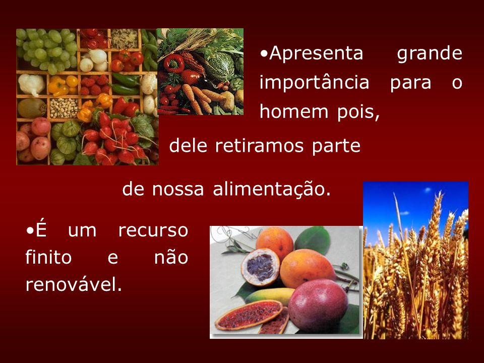 dele retiramos parte É um recurso finito e não renovável. Apresenta grande importância para o homem pois, de nossa alimentação.