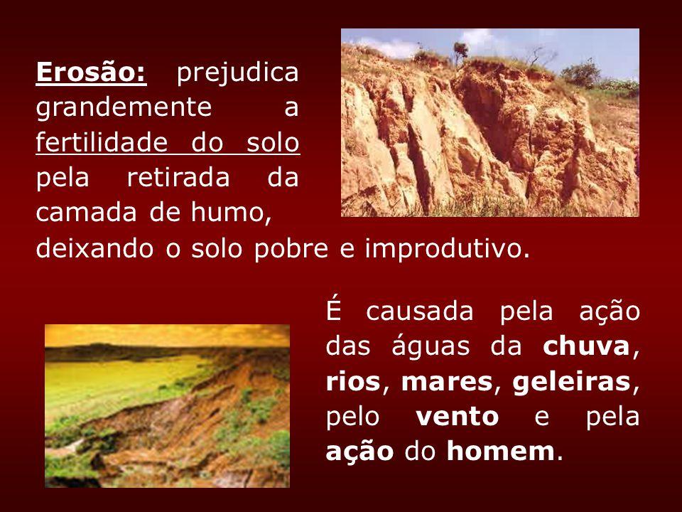 Erosão: prejudica grandemente a fertilidade do solo pela retirada da camada de humo, deixando o solo pobre e improdutivo. É causada pela ação das água