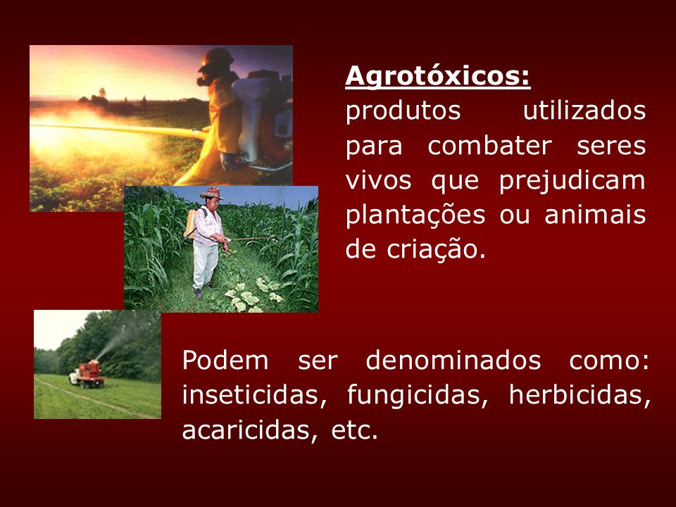Agrotóxicos: produtos utilizados para combater seres vivos que prejudicam plantações ou animais de criação. Podem ser denominados como: inseticidas, f