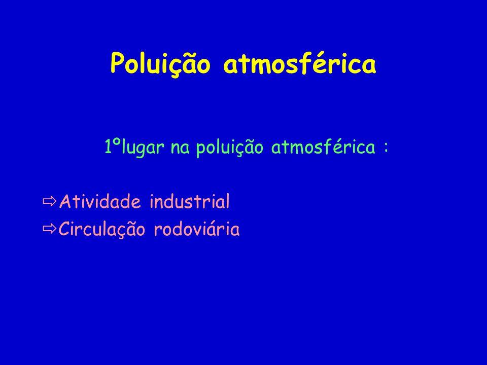 Poluição atmosférica 1ºlugar na poluição atmosférica : Atividade industrial Circulação rodoviária
