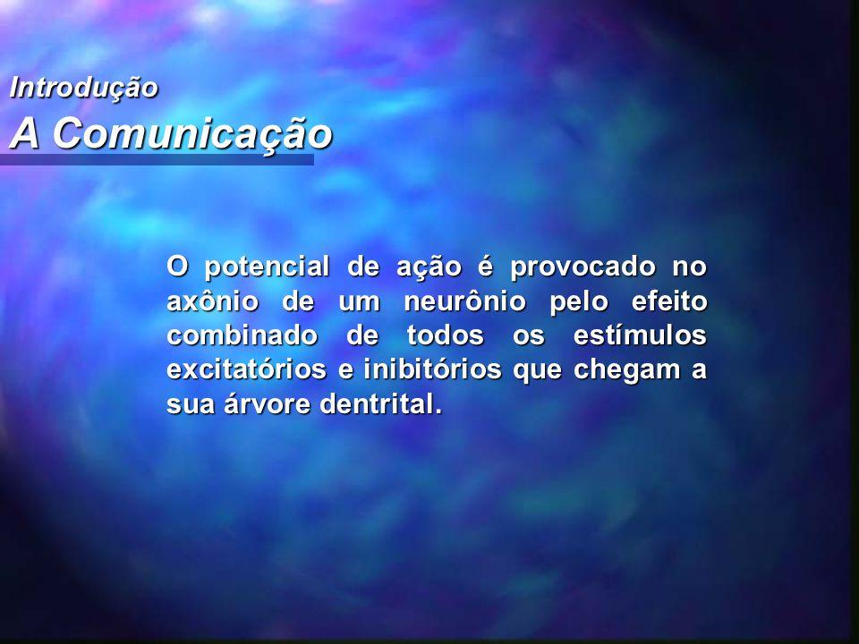 Introdução A Comunicação O potencial de ação é provocado no axônio de um neurônio pelo efeito combinado de todos os estímulos excitatórios e inibitóri