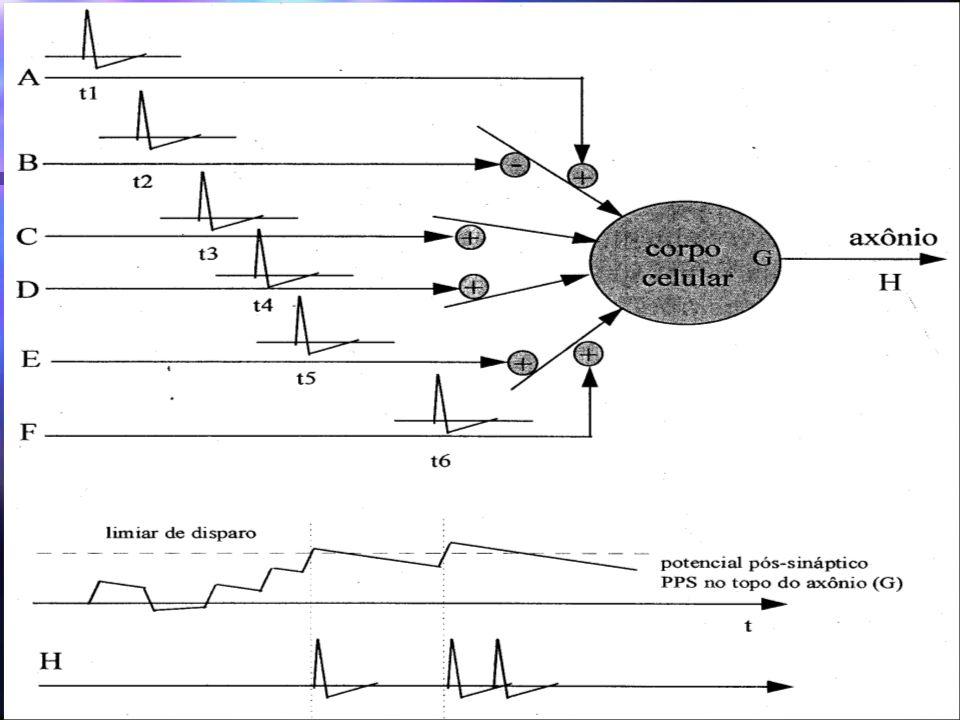 Principais Redes Redes Multicamadas - MLP Aprendizado - Back propagation Baseado na regra delta => regra delta generalizada Baseado na regra delta => regra delta generalizada W ji (t+1) = W ji (t) + n..X i (t) Camada de Saída Camada Intermediária