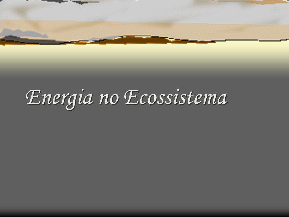 Ecologia de processos: fotossíntese Processo através do qual as plantas verdes transformam energia radiante, ou eletromagnética em energia química (Ferri, 1985).