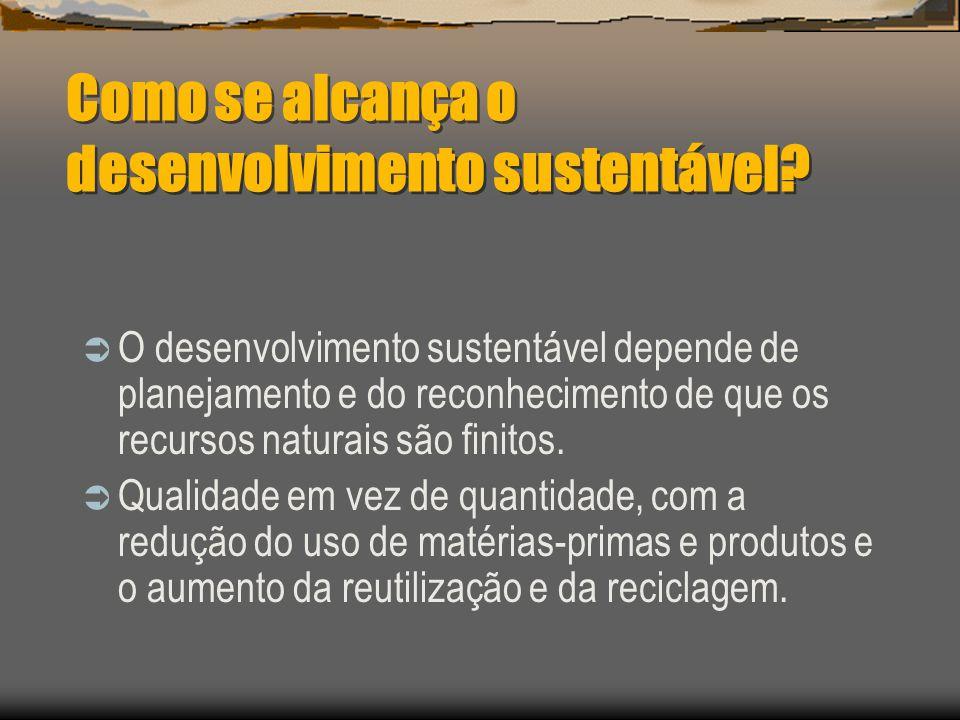 Desenvolvimento Sustentável Desenvolvimento capaz de suprir as necessidades da geração atual, sem comprometer a capacidade de atender as necessidades