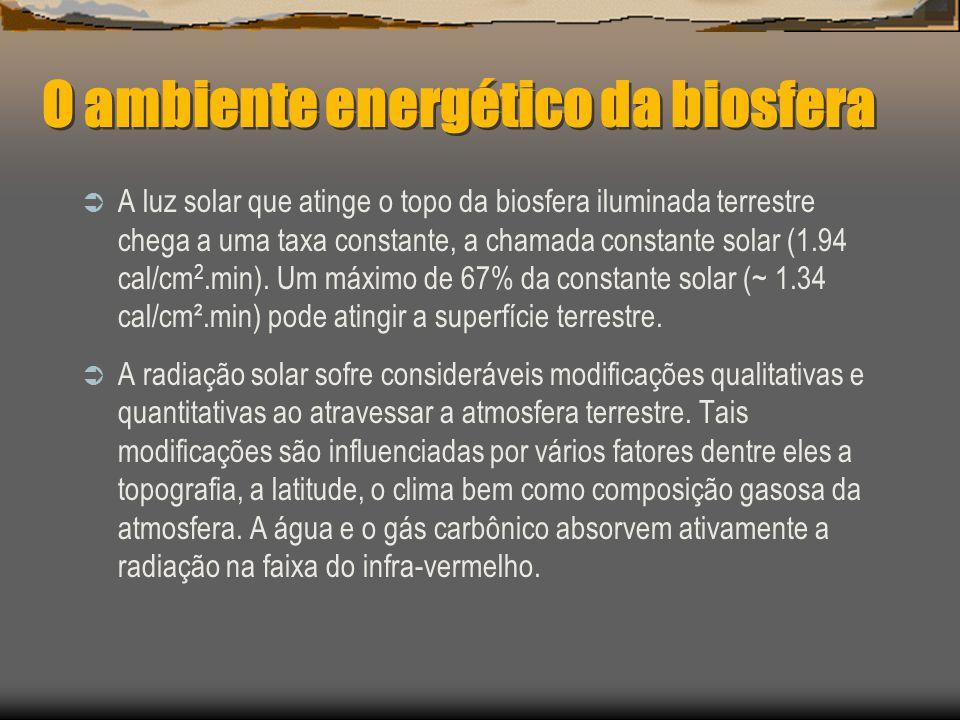 O ambiente energético da biosfera A luz solar que atinge o topo da biosfera iluminada terrestre chega a uma taxa constante, a chamada constante solar (1.94 cal/cm 2.min).