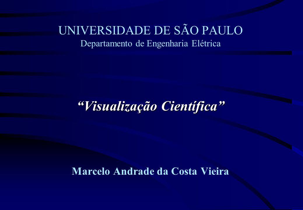 Visualização Científica UNIVERSIDADE DE SÃO PAULO Departamento de Engenharia Elétrica Visualização Científica Marcelo Andrade da Costa Vieira