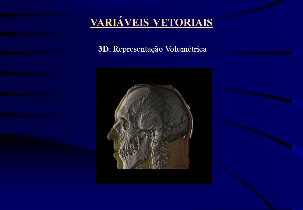 VARIÁVEIS VETORIAIS 3D: Representação Volumétrica